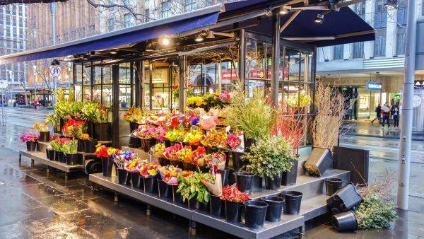 Kinh doanh shop hoa tươi cần những gì