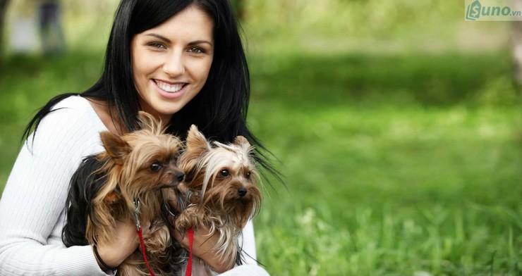 Mở dịch vụ chăm sóc thú cưng