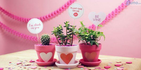 Trưng bày hàng hóa một góc riêng biệt cho mùa Valentine