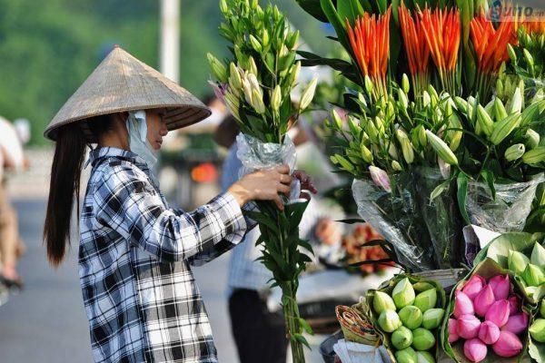 Các loại hoa mang lại may mắn