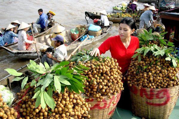 Mua trái cây giá sỉ ở chợ đầu mối
