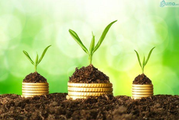 Bán buôn đồ cũ từ Nhật Bản: Cơ hội làm giàu cho người ít vốn