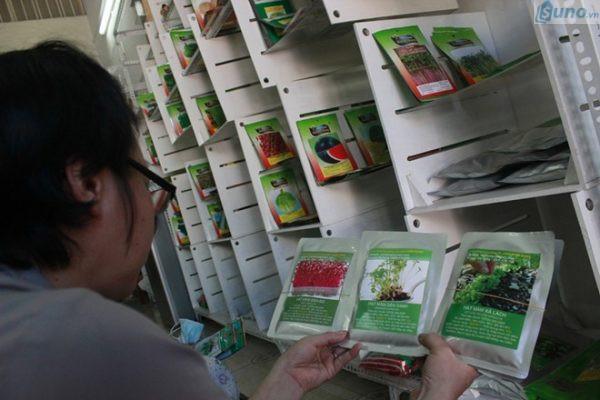 Kinh doanh hạt giống có nhiều tiềm năng phát triển