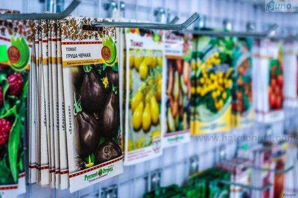 kinh nghiệm mở cửa hàng kinh doanh hạt giống