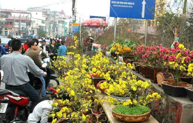 Cây Mai, Đào, các loại cây cảnh, hoa tươi như hướng dương, đồng tiền, cúc vàng,... đều là những mặt hàng đắt khách ngày Tết.